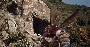 Mysterious Island Bee